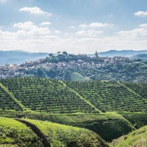 Vizzini Landscape